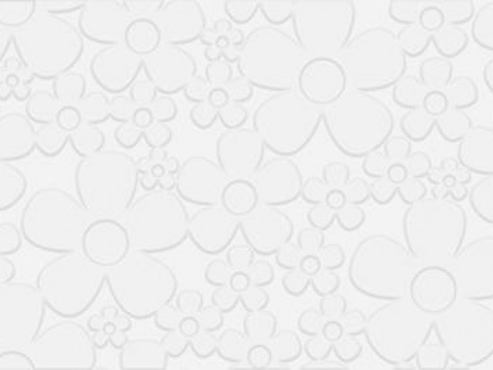 SOFT DAISY WHITE 20x60