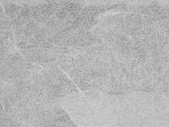 MINERAL GRIS ANTISLIP 30x60